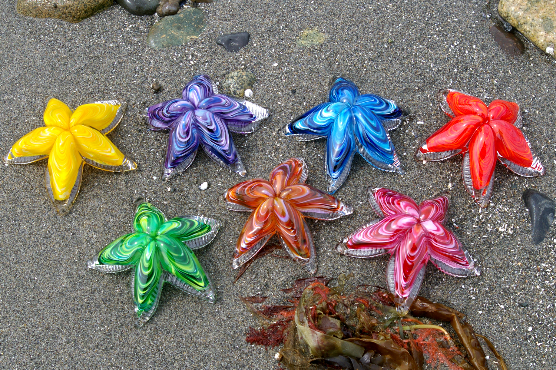 glass-starfish